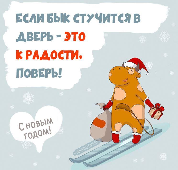 шуточные новогодние поздравления б ко р Н (2)