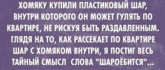 Прикольный анекдот из России лрбН