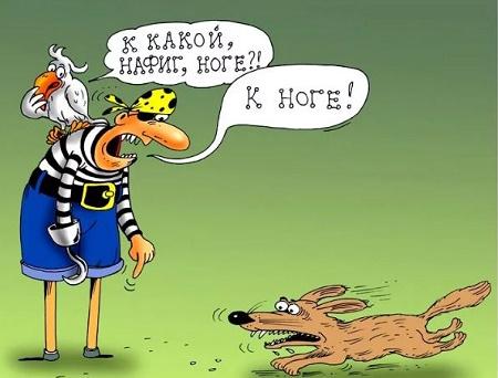 улетный анекдот про собаку и хозяина